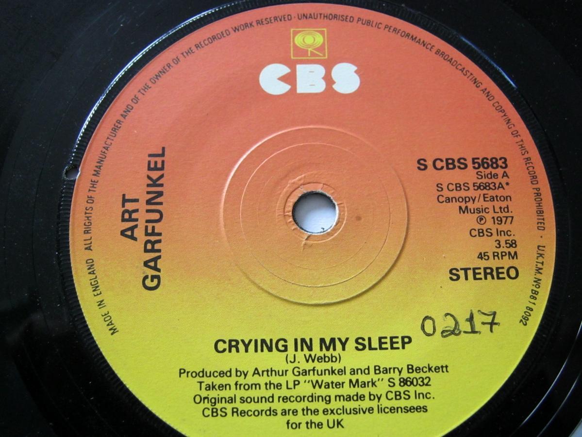 Crying In My Sleep